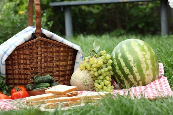 melon-watermelon-picnic