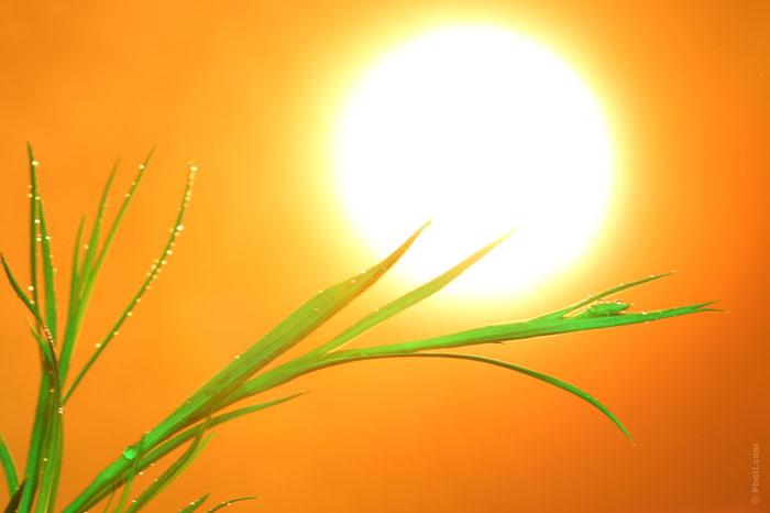 700-sun-heat-summer