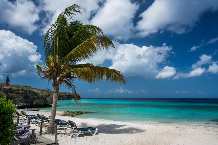 beach-vacation-holidays-sun-sea-seashore-sand-palms-sky-relaxation